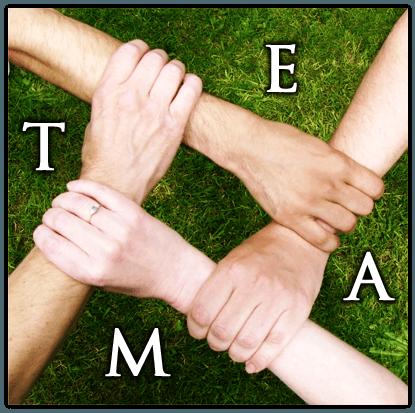 New Team Building Ideas
