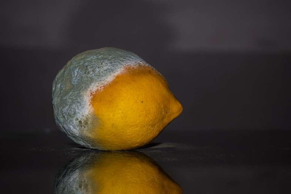 lemons remove negative energy