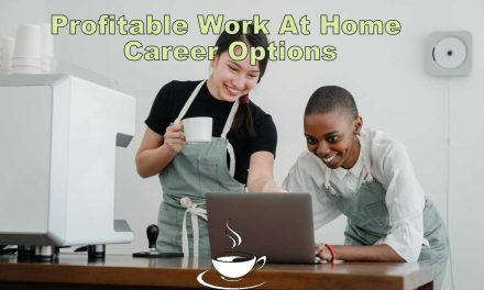 5 Profitable Work At Home Career Options