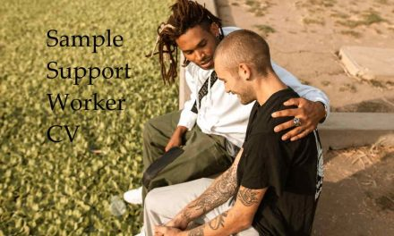 Great Sample Support Worker CV