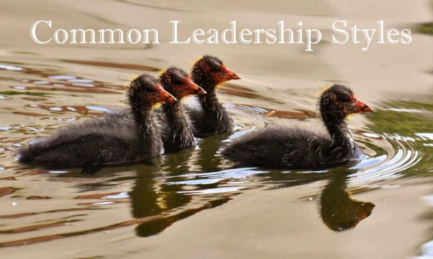 An Introduction to 8 Leadership Styles
